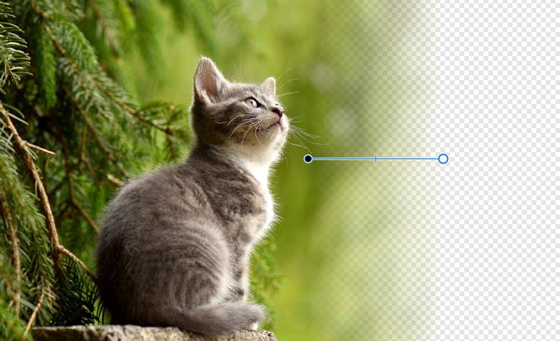 Affinity Designer ピクセルレイヤーに透明性ツールを使う